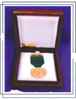 Premio Procer